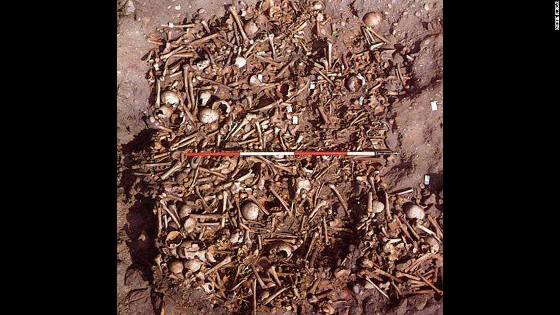The charnel burial at Repton includes the bones of nearly 300 people. Eighty percent of the remains were male, between the ages of 18 and 45. Many of them bear the marks of violent injury.