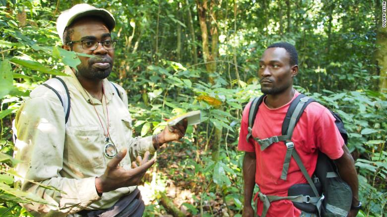 The tropical forest covers 85% of Gabon.