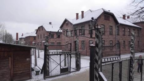 auschwitz death camp shubert pkg_00000000.jpg