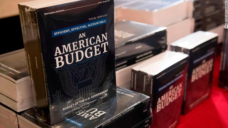 Copies of US President Donald Trump's Fiscal Year 2019 Government Budget sit on a table at the House Budget Committee on Capitol Hill in Washington, DC, February 12, 2018. / AFP PHOTO / SAUL LOEB