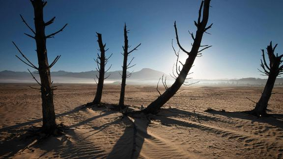 A picture taken on May 10, 2017 shows bare sand and dried tree trunks standing out at Theewaterskloof Dam, which has less than 20% of it's water capacity, near Villiersdorp, about 108km from Cape Town.South Africa's Western Cape region which includes Cape Town declared a drought disaster on May 22 as the province battled its worst water shortages for 113 years. This dam is the main water source for the city of Cape Town, and there is only 10% of it's usual capacity left for human consumption, at the last 10% is not useable, due to the silt content.  / AFP PHOTO / Rodger BOSCH        (Photo credit should read RODGER BOSCH/AFP/Getty Images)