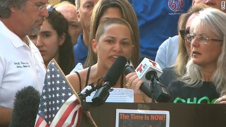 Rally to Support Gun Law Legislation