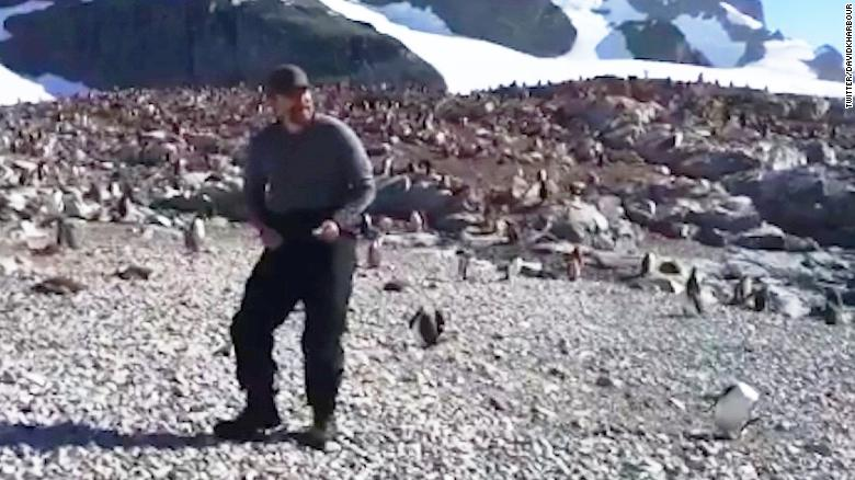 'Stranger Things' actor dances with penguins