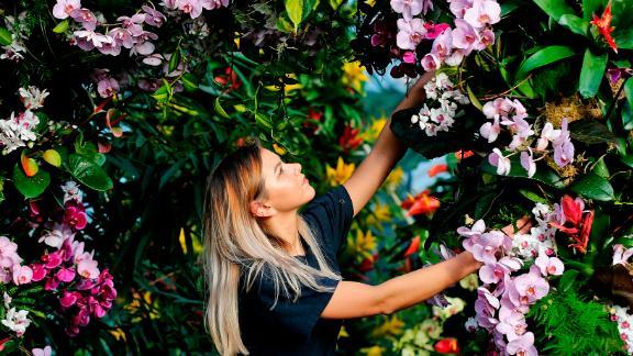 London, UK: Kew Gardens worker Jenny Forgie adjusts a display ahead of the celebrated gardens