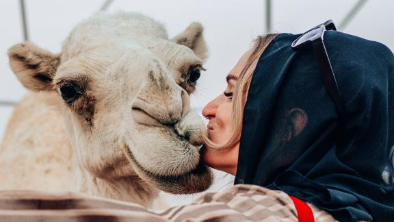 Star attraction: Journalist Danae Mercer shares a kiss with one of the thousands of camels at the festival.