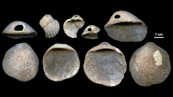 These perforated shells were found in Spain