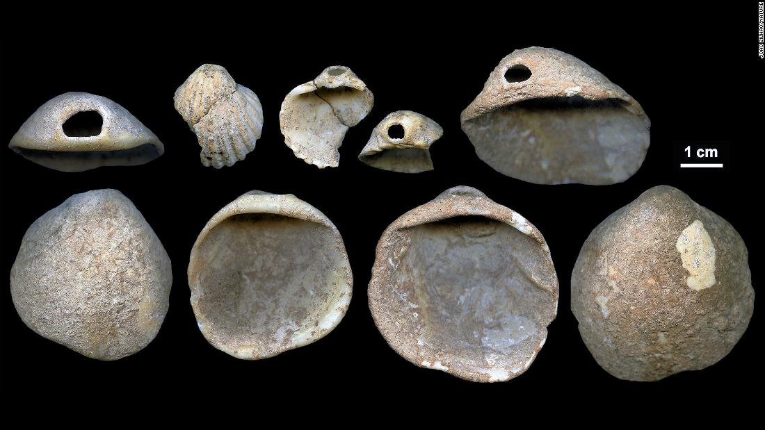 "<a href=""https://www.cnn.com/2018/02/22/health/neanderthal-art-symbols-cognition-study/index.html"">These perforated shells</a> were found in Spain's Cueva de los Aviones sea cave and date to between 115,000 and 120,000 years ago. Researchers believe these served as body ornamentation for Neanderthals."