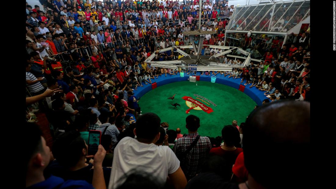 People watch a cockfighting match on Sunday, February 18 on the outskirts of Bangkok with the highest cash reward in Thai history -- more than $1 million (US).