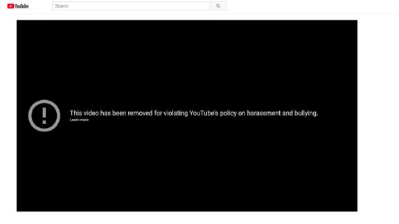 """YouTube has removed the video,  """"David Hogg Can"""