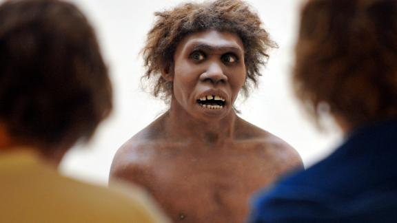 ** EMBARGOED UNTIL MARCH 13, 2013 UNTIL 00.01 UK TIME ** (FILES) -- A photo taken on July 2, 2008 in Eyzies-de-Tayac, Dordogne, shows a model representing a Neanderthal man on display at the National Museum of Prehistory. Neanderthal brains were adapted to allow them to see better and maintain larger bodies, according to new research by the University of Oxford and the Natural History Museum, London.   AFP PHOTO PIERRE ANDRIEU        (Photo credit should read PIERRE ANDRIEU/AFP/Getty Images)