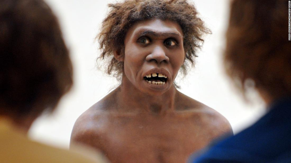 New findings paint picture of Neanderthals as artists