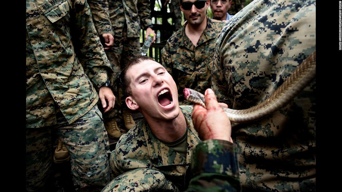 A US Marine is fed cobra blood during the Cobra Gold training exercise in Thailand on Monday, February 19. Royal Thai Marines demonstrated various methods of surviving in the jungle. Cobra blood and flesh are used as nutrition in a scenario where sustenance is scarce.
