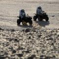 Oman desert space buggies