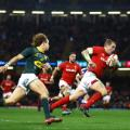 wales south africa rugby