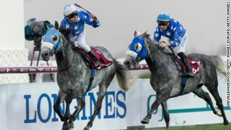 Qatar's important role in global horse racing