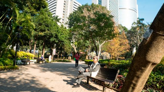 Hong Kong is greener than most cities, and almost all districts are members of the WHO global network of age-friendly cities, which encourages the creation of urban spaces supportive of older people. Pictured, Hong Kong Park in the center of the city.