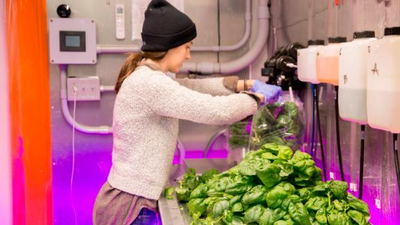 Square Roots, US -- Square Roots conducts a year-long training program in indoor farming, and says some of its past participants have gone on to start their own urban farming businesses.