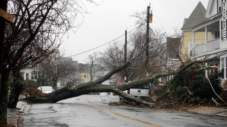 An uprooted tree that took down a power line last week blocks a street in Swampscott, Massachusetts.
