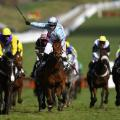 Cheltenham Festival day one first race