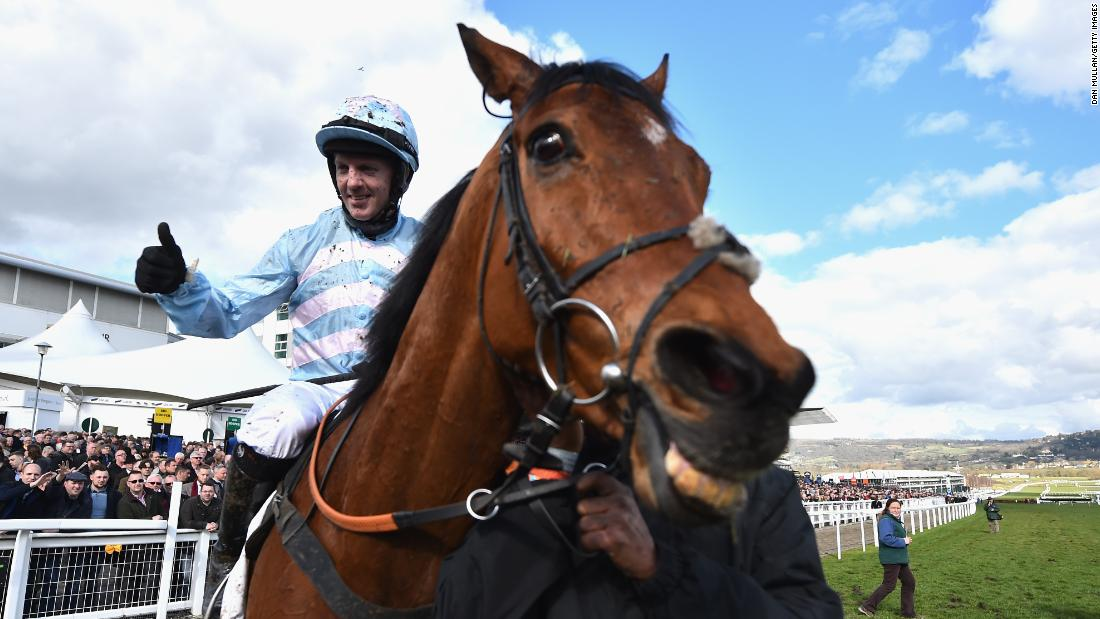 <strong>Cheesy grin: </strong>Summerville Boy echoes the feeling of the jump racing world as another Cheltenham Festival gets under way in the English Cotswolds.