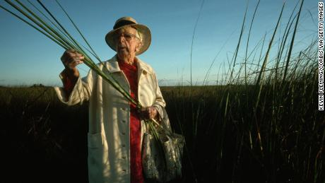Marjory Stoneman Douglas, author of The Everglades: River of Grass, examines some stalks of saw grass from a section of the national park. Douglas is a longtime proponent of environmental protection and preservation of the Everglades. (Photo by Kevin Fleming/Corbis via Getty Images)
