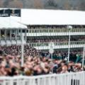 Cheltenham Festival day two Ladies day stands