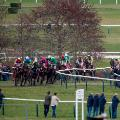 Cheltenham Festival Ladies Day Tiger Roll