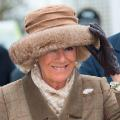 Cheltenham Festival Ladies Day Camilla, Duchess of Cornwall