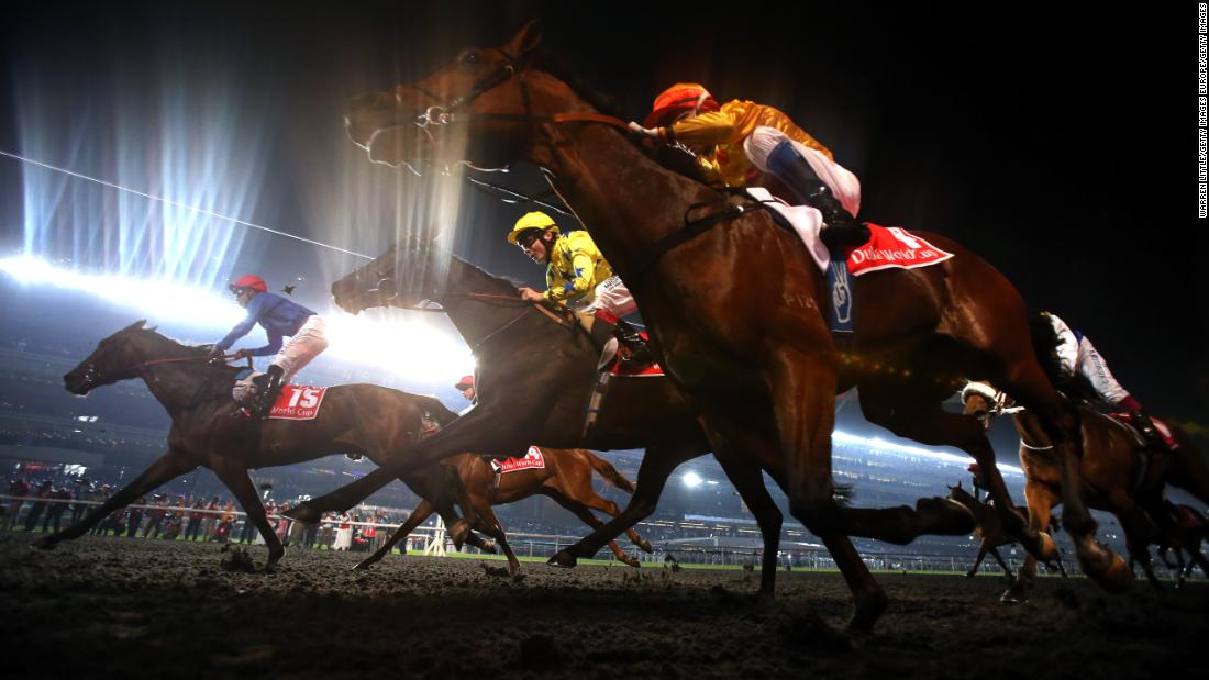 The Dubai World Cup in the blue riband event on the world's richest day of racing with a purse of $30 million up for grabs at the Meydan Racecourse.