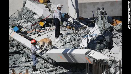 MIAMI, FL - MARCH 15:  A rescue dog and its handler works at the scene where a pedestrian bridge collapsed a few days after it was built over southwest 8th street allowing people to bypass the busy street to reach Florida International University on March 15, 2018 in Miami, Florida. Reports indicate that there are an unknown number of fatalities as a result of the collapse, which crushed at least five cars.  (Photo by Joe Raedle/Getty Images)