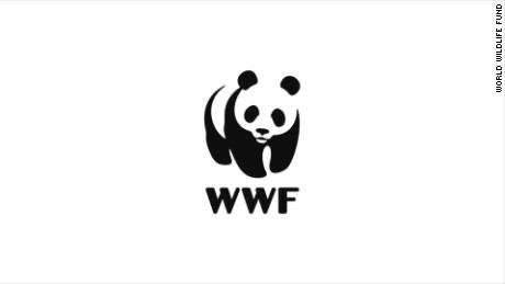 "title: WWF's Manifesto duration: 00:03:25 site: Youtube author: null published: Wed Nov 04 2015 16:44:38 GMT-0500 (Eastern Standard Time) intervention: no description: For more than half a century, WWF has worked to find innovative solutions that meet the needs of both people and nature. It's a big job. And no one person or organization can do it alone. But together we can. Working with communities, government, businesses and individuals, we can protect life on this planet, including our own.   Music Credits: ""Together We are One"" Lewis Andrew (PRS) / Hamish Fingland (PRS) / Chris Potter (PRS) Audio Network"