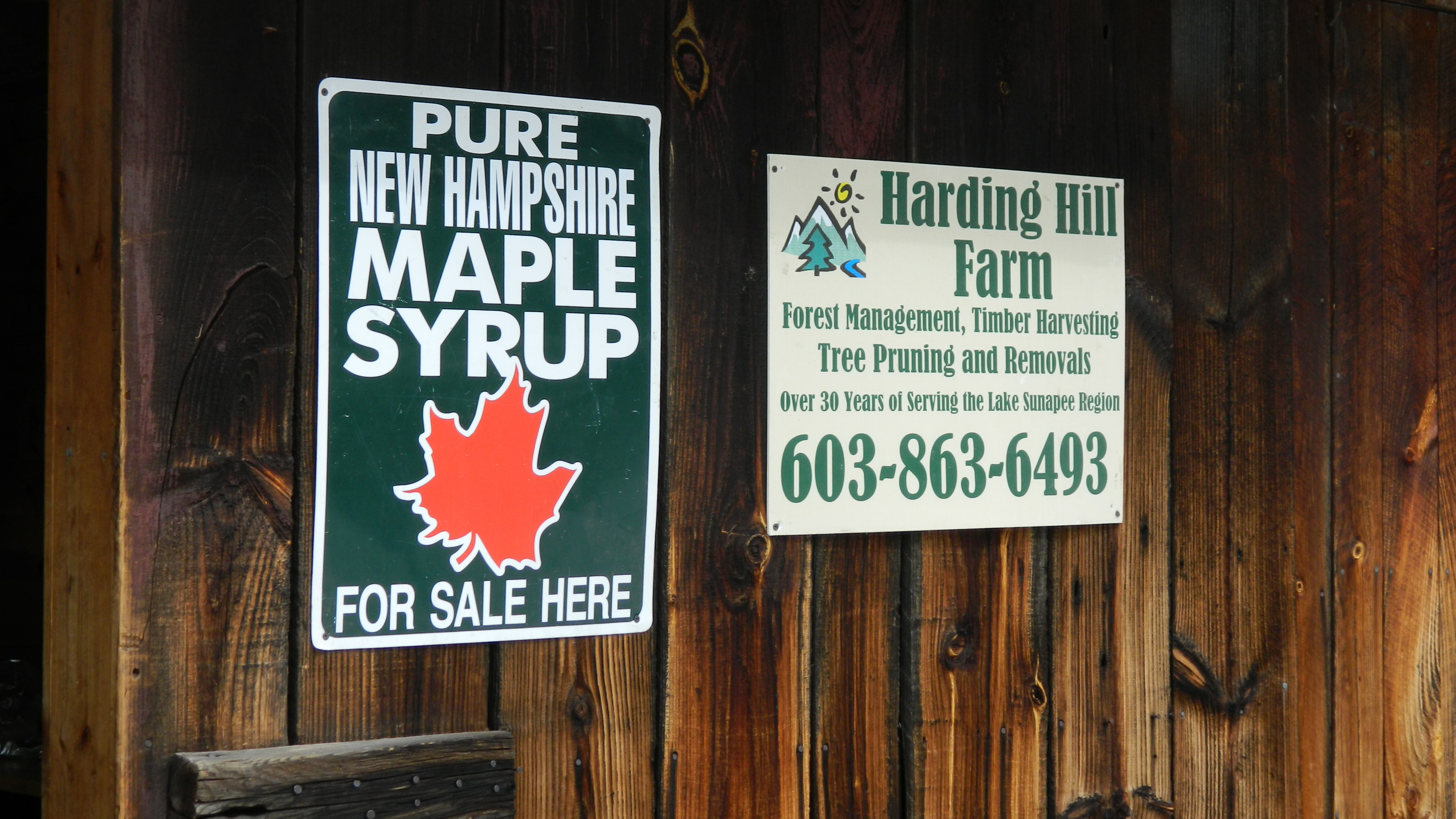 Maple Sap Is Running In New England Grab A Bucket Cnn Travel