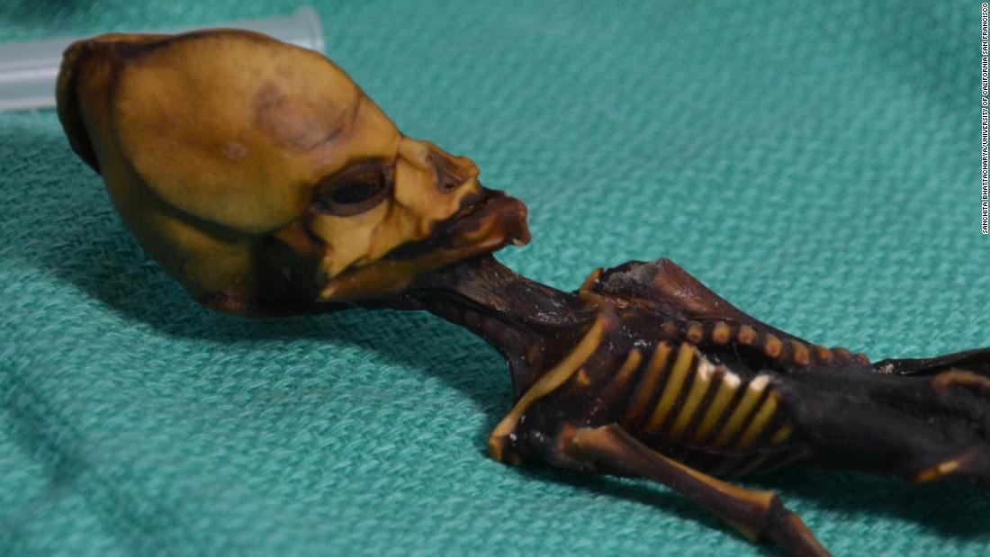 Mystery of 'alien' skeleton solved