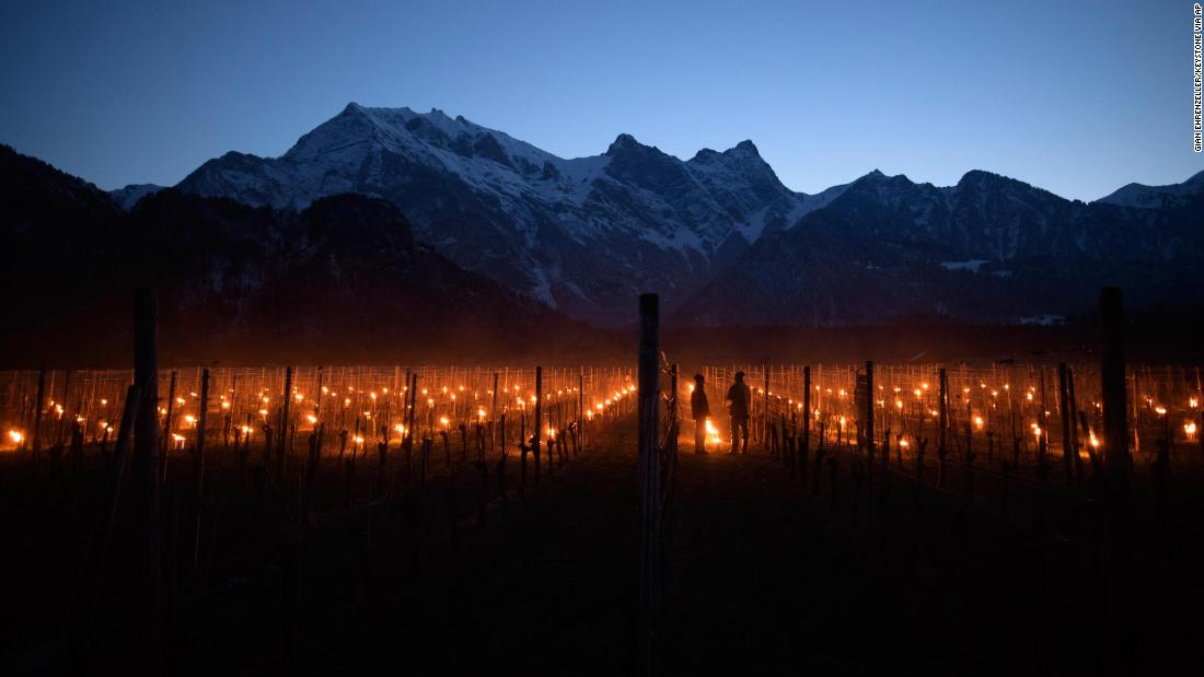 Frost candles are lit in a vineyard in Flasch, Switzerland, on Thursday, March 22.