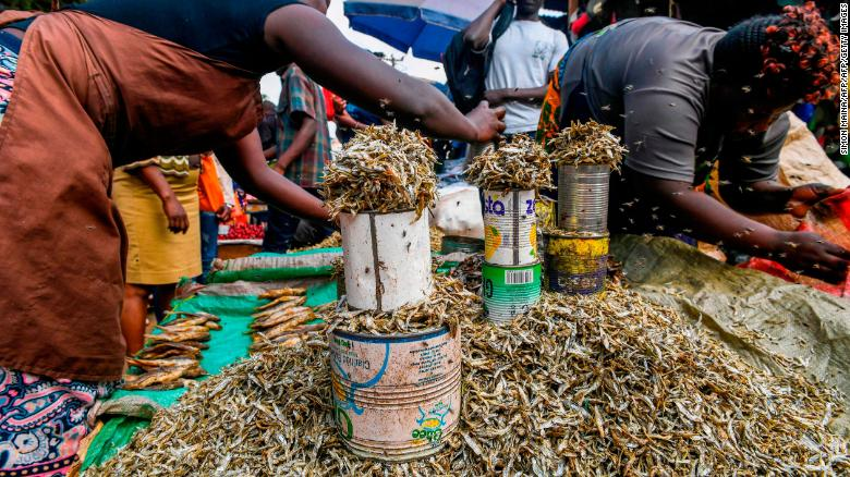 Women sell dried fish at the Kawangware market on the outskirts of Nairobi.