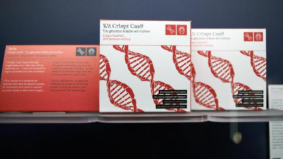 False kit of genetics editing with Crispr Cas-9 technology.