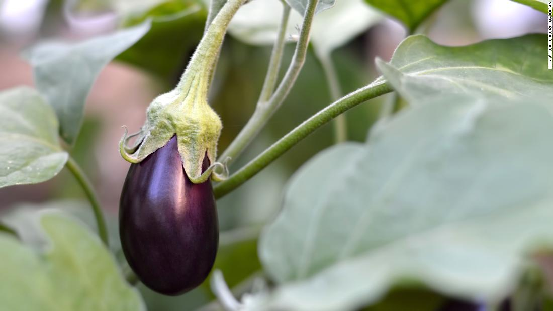 "Eggplant showed themselves guilty, at worst, of contamination with three types of pesticides, according to the group. Best of all, almost three out of every four tested eggplants contained no pesticides whatsoever. Thus, eggplants ranked last on the top 10 within the ""Clean 15"" list."