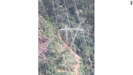 Puerto Rico's Electric Power Authority tweeted an image it says was of the tree that fell across a power line near the southeast mountain town of Cayey.