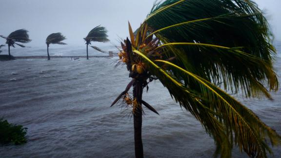 Hurricane Irma blows down palm trees in Caibairién, Cuba, as the Category 5 storm ravaged much of Caribbean in early September of 2017. The storm wrecked large parts of Cuba's agricultural sector and left thousands with damaged homes. Even though Cubans are proud of their well-organized hurricane preparedness system, Irma overwhelmed the country's efforts. At least 10 people died on the island as a result the storm.