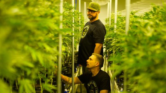 Because Newsom and Sweatt were able to grow the plants, process the plants and sell them at their own licensed facilities, they were able to set aside 10% of everything they grew.
