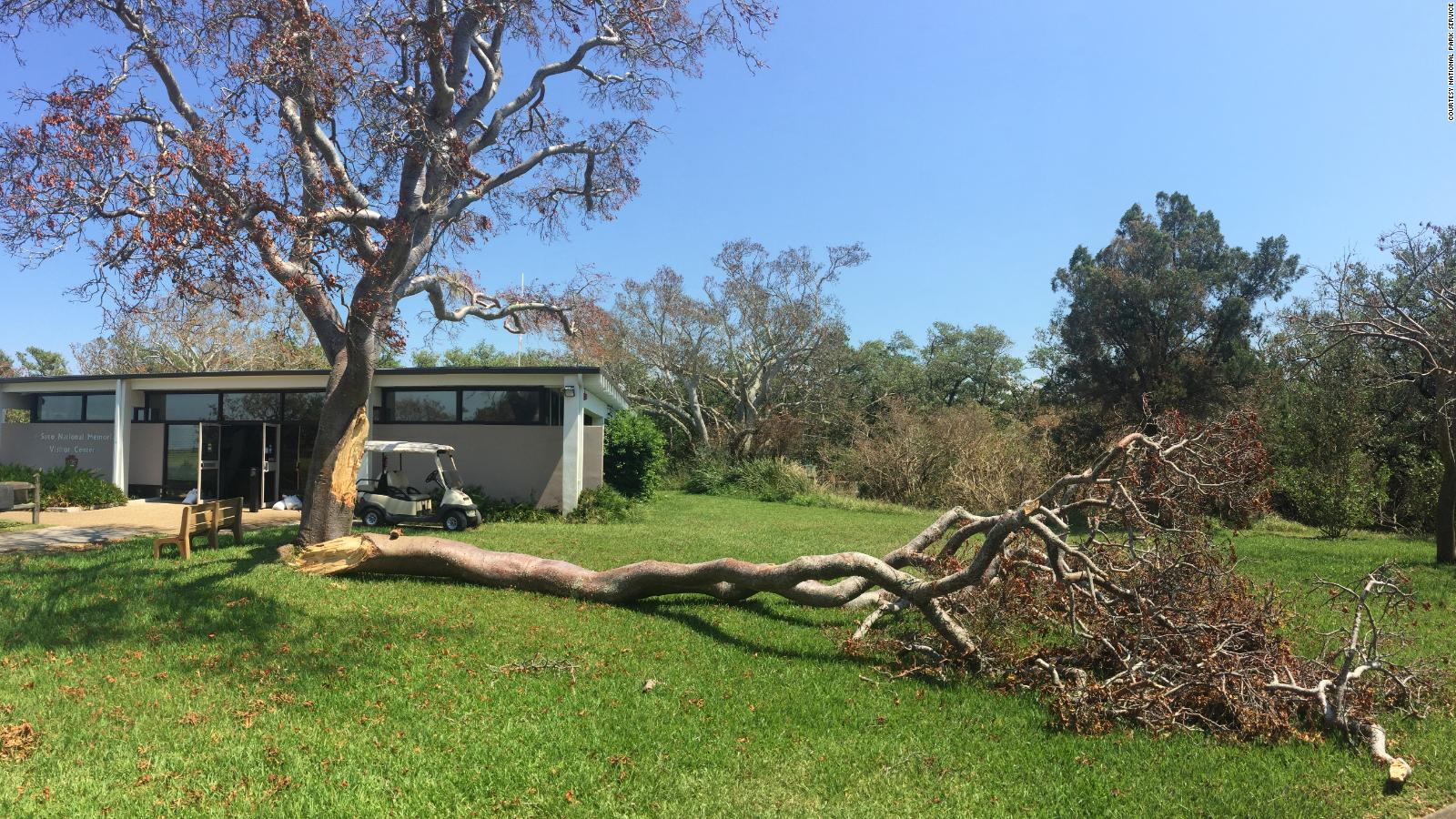 National Park Week 2018: Hurricanes couldn't knock out these ... on driveway home design, parking roof design, stations for cars parking design,