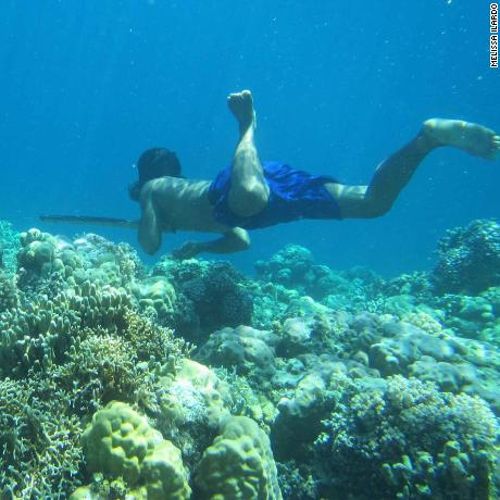 A Bajau diver hunts fish underwater using a traditional spear.