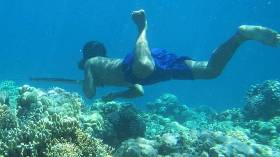 A Bajau diver uses a spear to hunt fish.