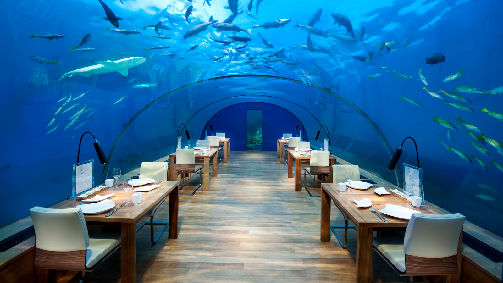 Image result for The world's first-ever underwater hotel now open in the Maldives