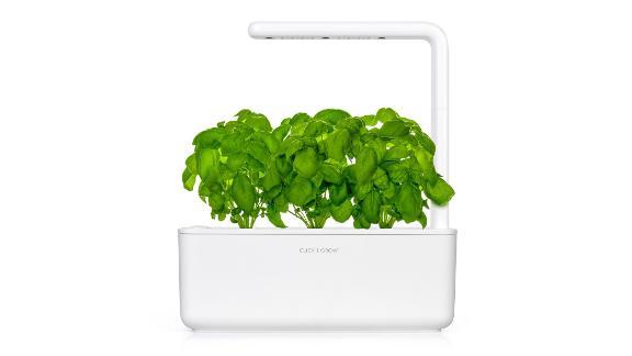 Click and Grow Smart Garden 3 ($99.95; clickandgrow.com)