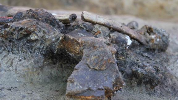 The remains of a butchered rhinoceros are helping researchers to date when early humans reached the Philippines. They found a 75% complete skeleton of a rhinoceros that was clearly butchered, with 13 of its bones displaying cut marks and areas where bone was struck to release marrow, at the Kalinga archaeological site on the island of Luzon.