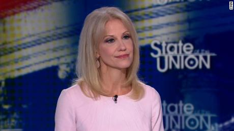 Image result for kellyanne conway cnn state of the union