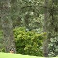 Tiger Woods Masters Augusta best photos final round