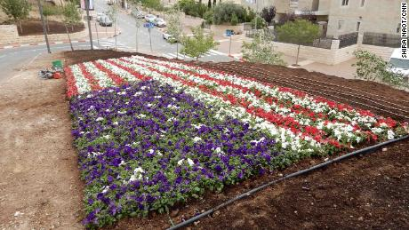 Flowers in the shape of the American flag planted at the entrance of the embassy.
