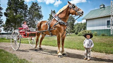 Big Jake made Guinness World Record history in 2010 when he was officially named the tallest living horse.